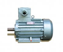 Three-phase Explosion-proof Motor
